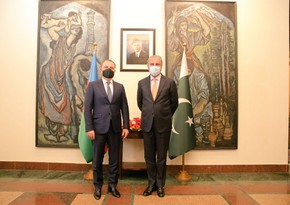 Foreign Ministers of Azerbaijan, Pakistan meet in Islamabad