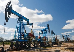 Kazakhstan to continue to increase oil production under OPEC + agreement