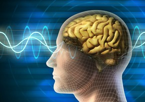 COVID-19 can affect brain, scientists say
