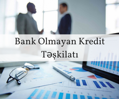 """""""Avrasiya Kredit""""in aktivləri 5% azalıb"""
