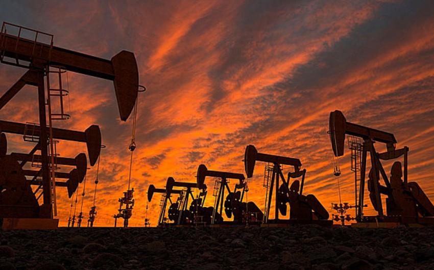 Report: Brent markalı neft 30 dollar/barelə qədər ucuzlaşacaq