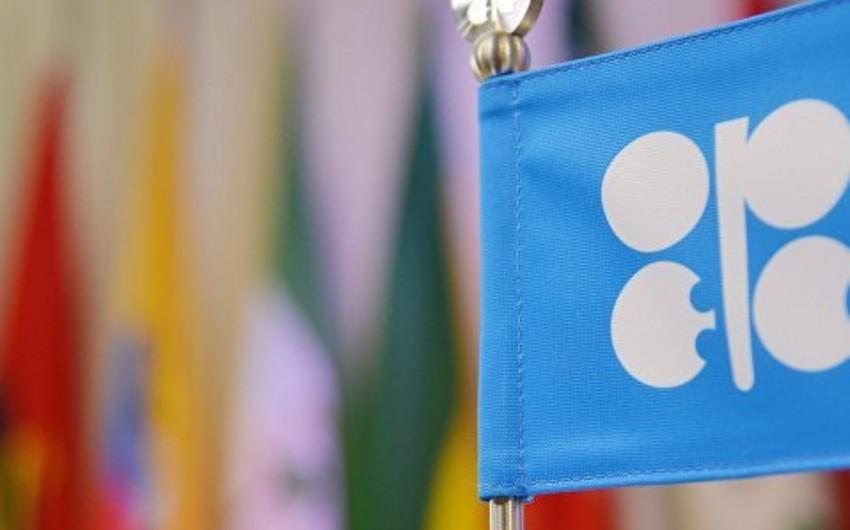 Сделка ОПЕК+ может быть продлена до конца 2020 года