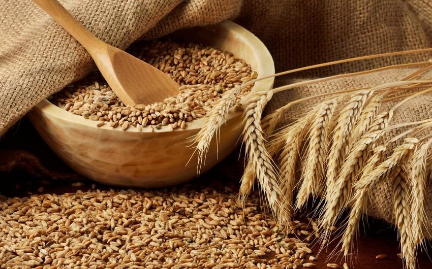 Азербайджан сократил импорт пшеницы на 77%