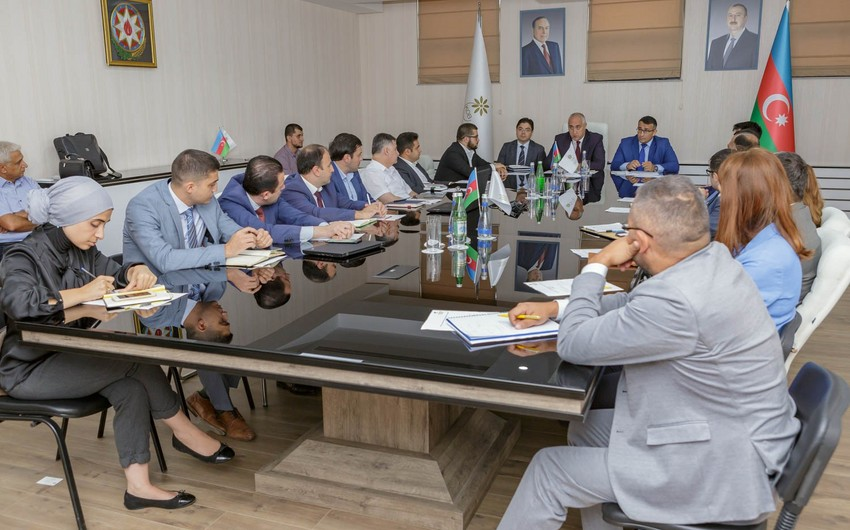 К исследованию внутреннего рынка в Азербайджане могут быть привлечены иностранные компании