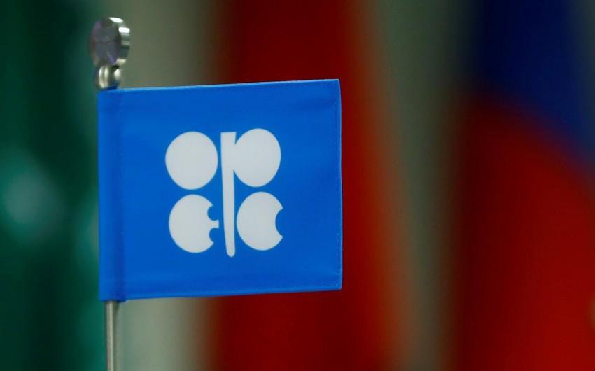 OPEC seeks to ensure permanent alliance with Azerbaijan