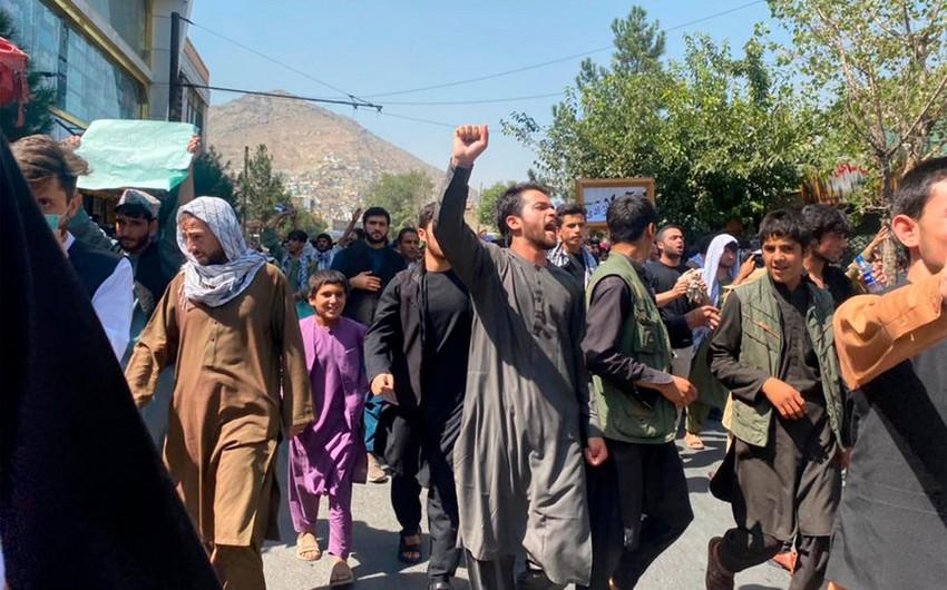 """""""Taliban"""" Kabildəki etirazları işıqlandıran 4 jurnalisti saxlayıb"""