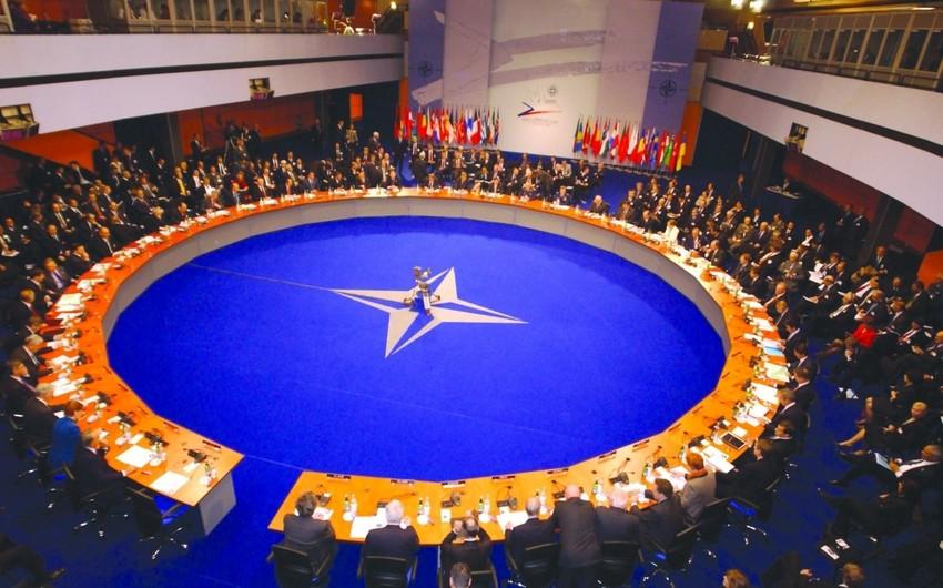 Milli Məclisin deputatı NATO PA-nın payız sessiyasında iştirak edəcək