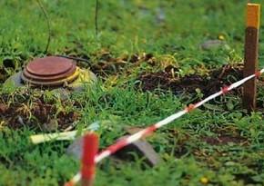 Армянский полковник признал установку большого числа мин в Лачине и Кельбаджаре