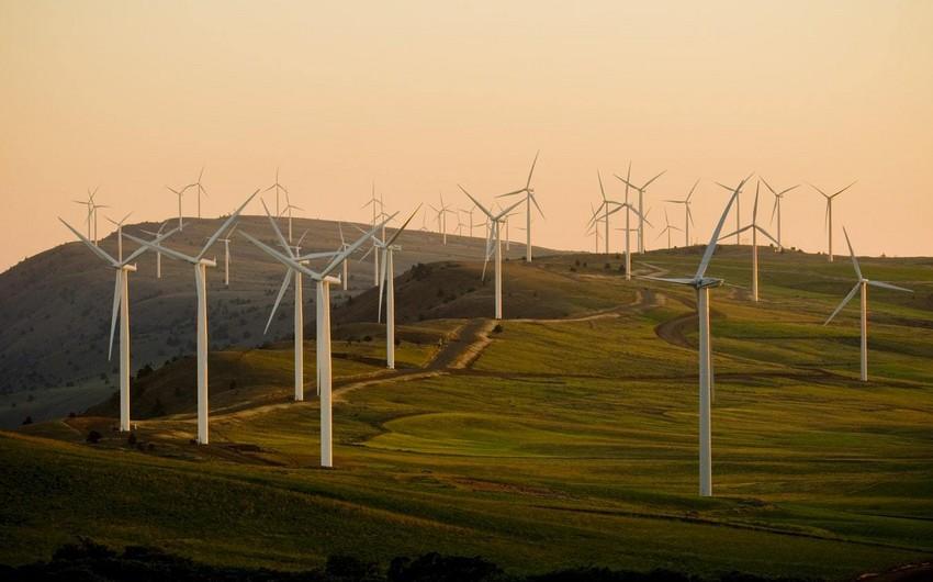 BP gələn həftənin sonunadək hökumətə alternativ enerji ilə bağlı  kommersiya təkliflərini təqdim edəcək