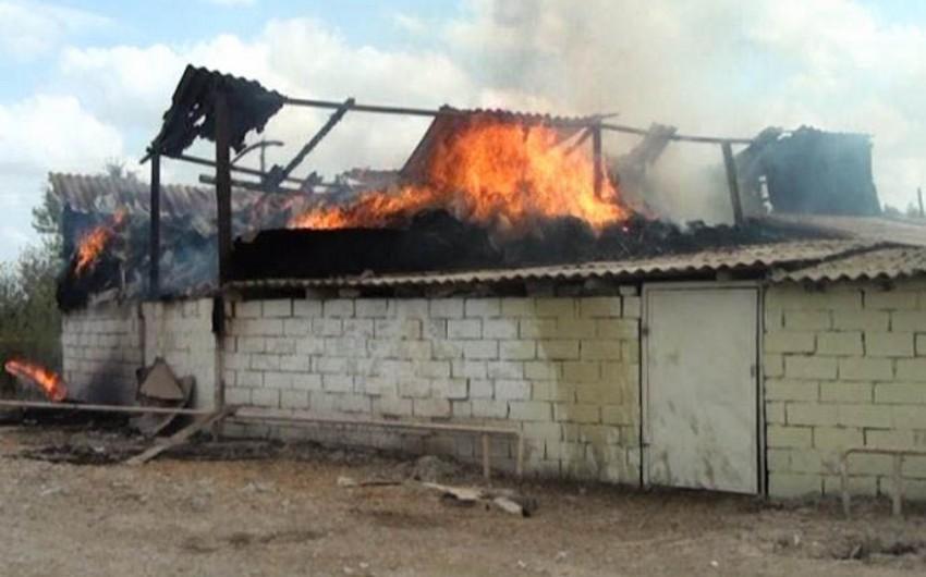 Neftçalada evin çardağına yığılmış 1200 ədəd ot bağlaması yanıb - FOTO