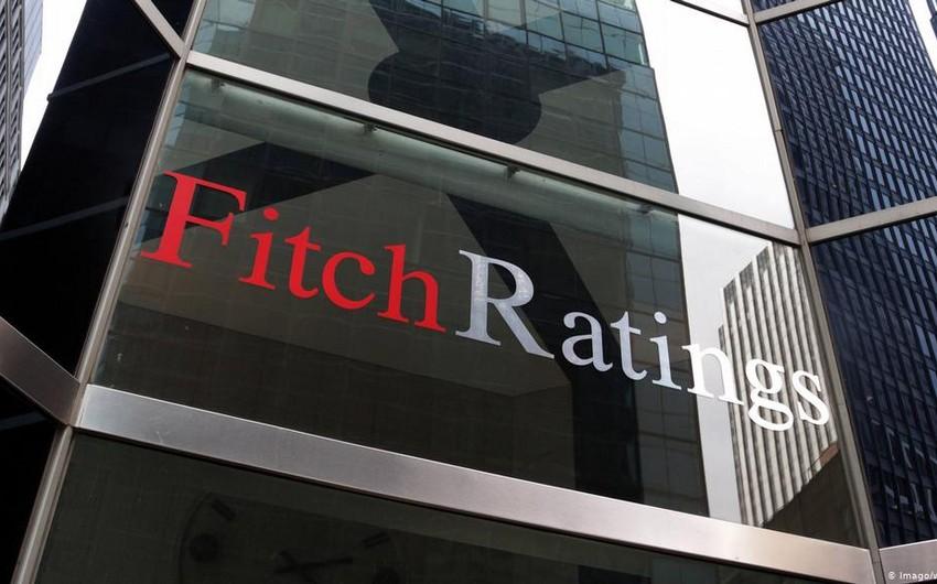 В Fitch рассказали, кто будет управлять ценами на нефть