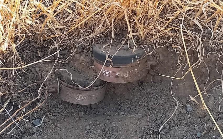 Спецпредставитель президента: В Агдаме повсеместно устанавливались мины-ловушки