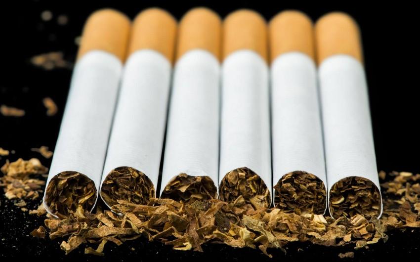 Azərbaycan bu il tütün məmulatlarının idxalını 2 dəfədən çox azaldıb