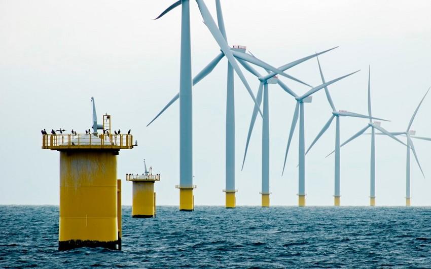 Cəmil Məlikov: Azərbaycan addım-addım külək enerjisini mənimsəmək niyyətindədir