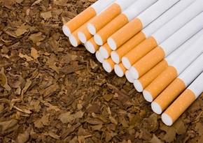 Azərbaycan tütün idxalına çəkdiyi xərci 27 % azaldıb