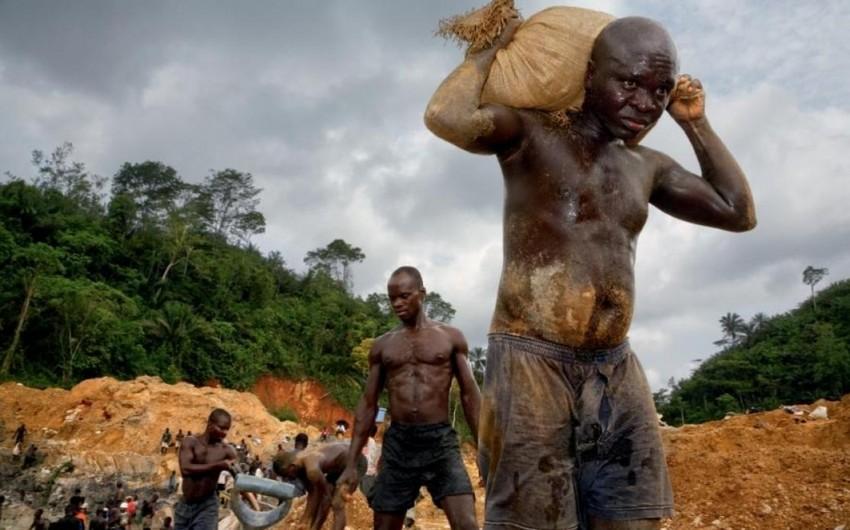 Жертвами желтой лихорадки за четыре месяца стали 300 жителей Анголы