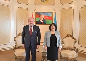 Состоялась встреча председателей парламентов Азербайджана и Турции