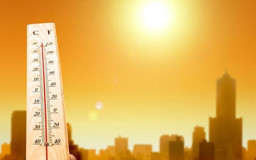 Британские ученые: 2016 год станет самым жарким за всю историю метеонаблюдений