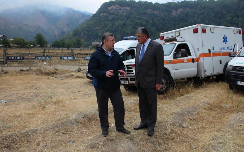 Посол Азербайджана посетил место сильных лесных пожаров в Боржомском ущелье Грузии
