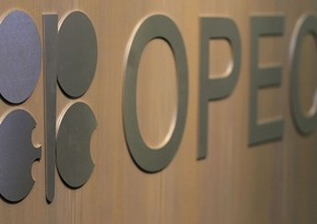 ОАЭ выступили за рост добычи нефти ОПЕК+