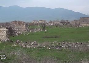 Видео из села Шихбабали Агдамского района