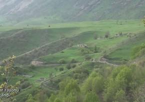 Видеокадры из села Заллар Кельбаджарского района