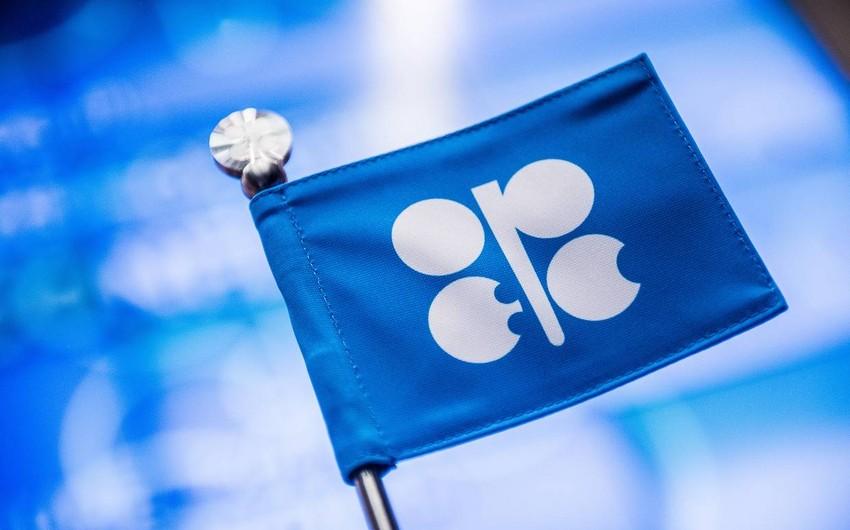 OPEC hasilatın azaldılması öhdəliyinin icrasında Azərbaycanın aparıcı rol oynadığını bəyan edib