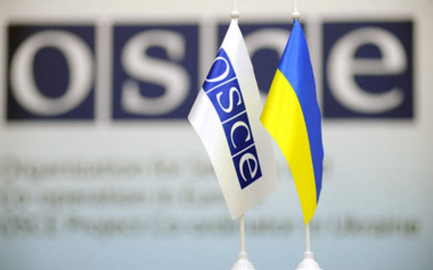 OSCE: More than five thousand people killed in south-eastern Ukraine