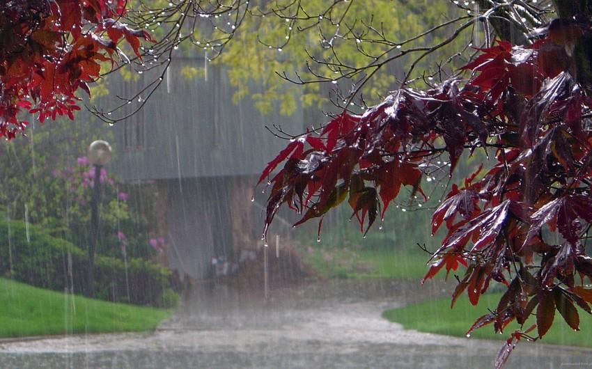 Lənkəran-Astara zonasında leysan xarakterli güclü yağış yağıb