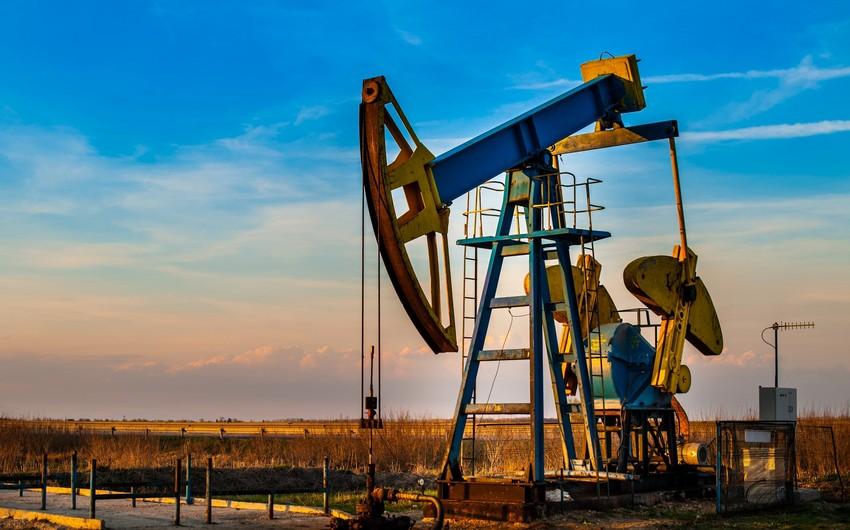 Bu il Azərbaycanda 23,2 milyon ton neft hasil edilib