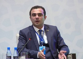 Head of UDAU: Azerbaijani Diaspora is united in condemnation of Armenian provocations
