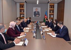 Azerbaijani FM meets with Chairman of Committee of Iraqi Parliament