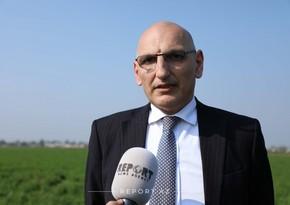 Эльчин Амирбеков: Армения не хочет уходить с оккупированных ею территорий