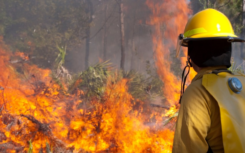California wildfires: At least 5 died