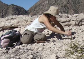 Argentinada qədim sürünənlərin yeni növü kəşf edildi