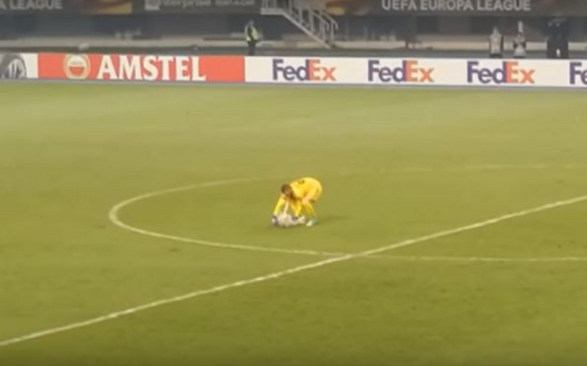 На матче Лиги Европы на игровое поле выбежала собака
