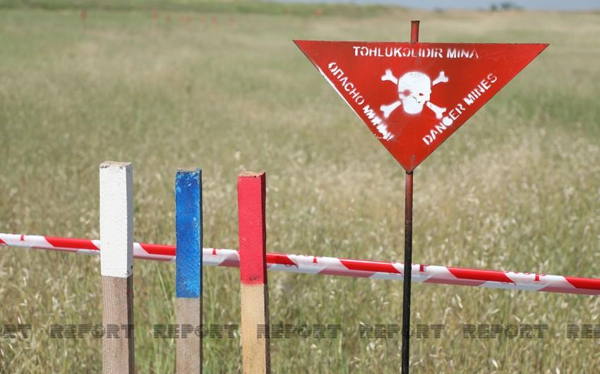 Macar jurnalist: Bakı dağıdılmış regionların bərpası üçün pulunu və qüvvəsini əsirgəməyəcək