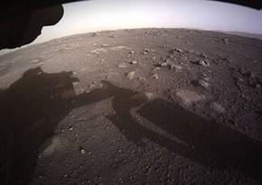 Споры черной плесени могут пережить путешествие на Марс