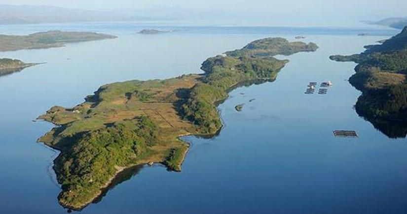 Latın Amerikası ölkələri Folklend adalarını Argentinaya verməyə çağırıb