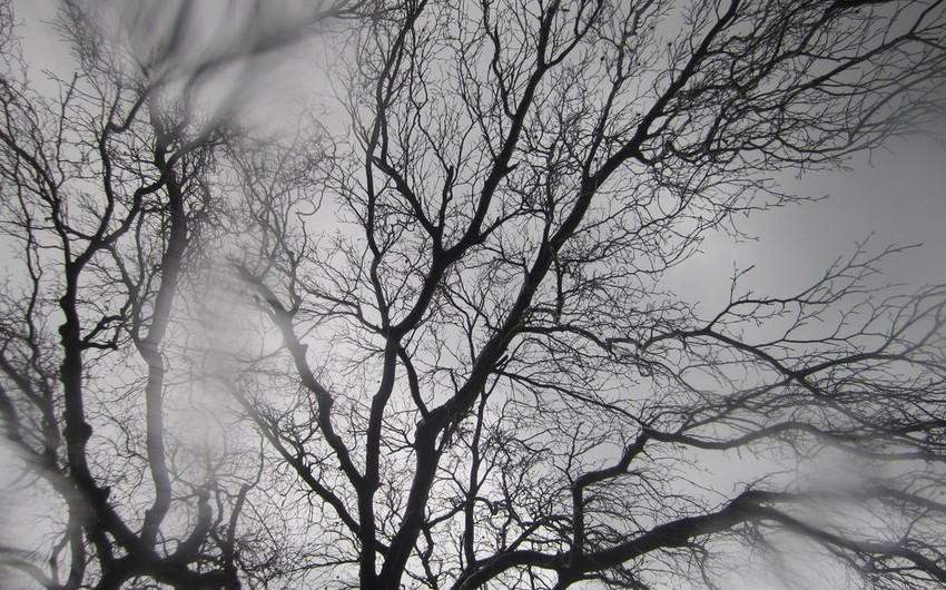Sabah Azərbaycanın bəzi rayonlarında leysan xarakterli yağış və dolu yağacaq