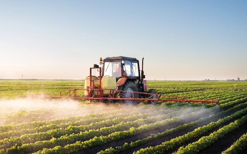 Azerbaijan to allocate over $3M to develop agricultural insurance