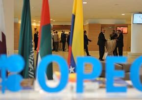 ОПЕК+ согласовал ежемесячное повышение добычи нефти