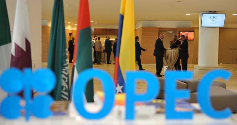 OPEC: Qarşıdakı dövrdə neft ən çox istehlak edilən yanacaq olacaq