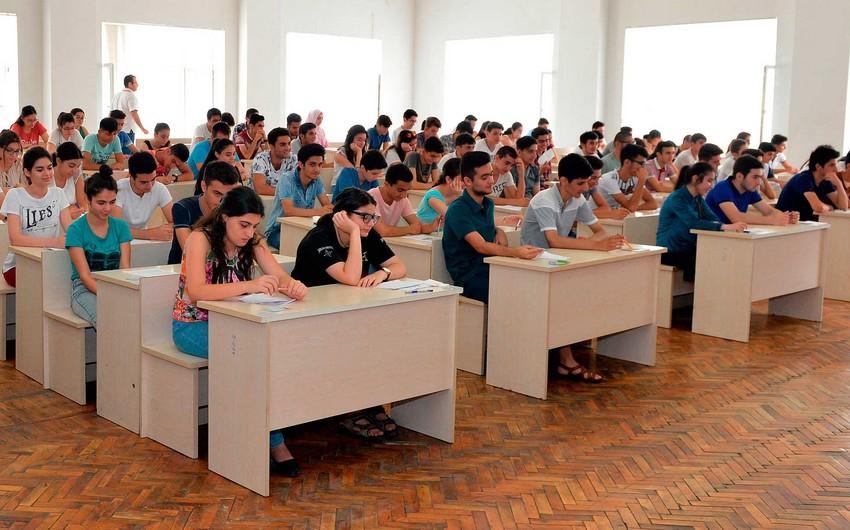 Ali təhsilin bakalavriat səviyyəsində ixtisasların sayı artırılıb