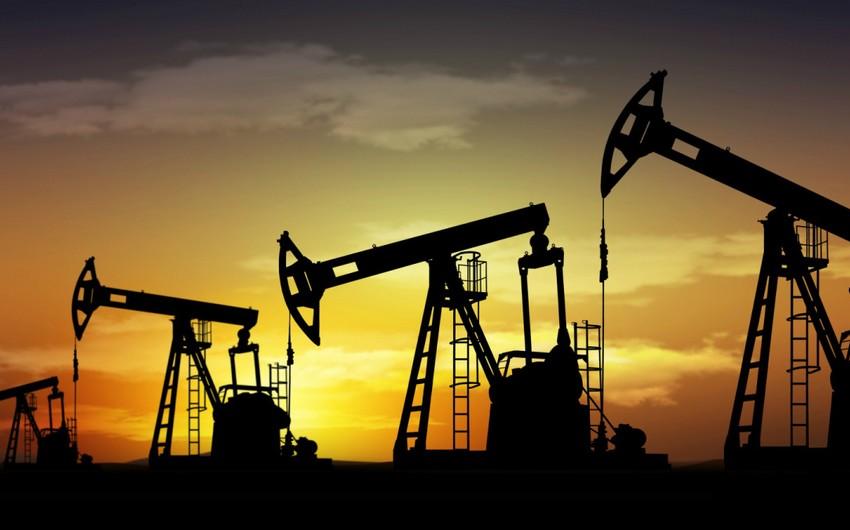 Численность активных нефтяных скважин в США растет, несмотря на падение цен на нефть