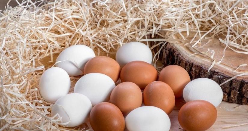 Yumurtada ölümcül bakteriya mövcuddur