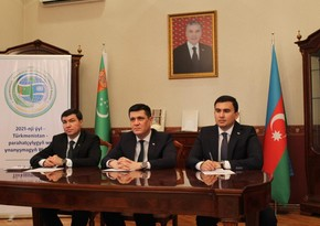 Телемост соединил представителей научного сообщества Туркменистана и Азербайджана