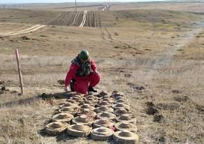 В прифронтовой зоне обнаружено 126 неразорвавшихся боеприпасов