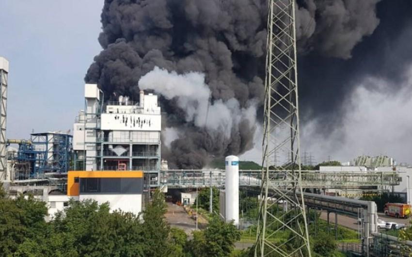 Стали известны причины взрыва на химзаводе в Германии