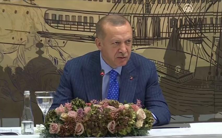 Эрдоган: Число террористов, нейтрализованных в рамках операции Источник мира, достигло 490